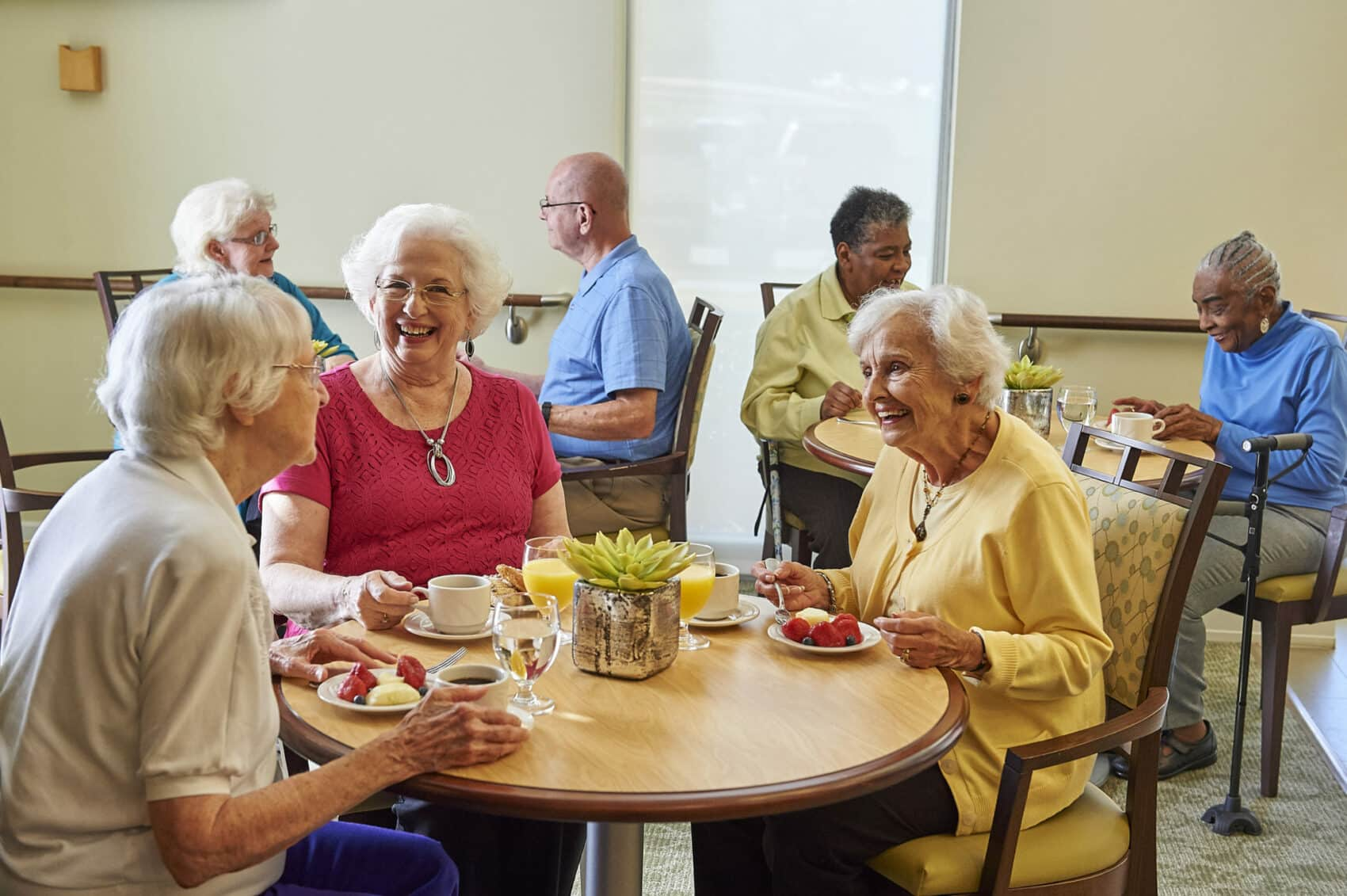 types senior housing users